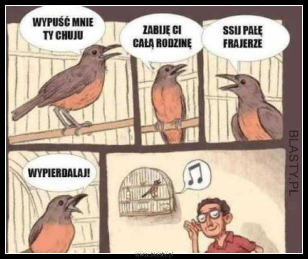 Jak pięknie śpiewa